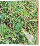 Lizard 7 Wood Print