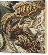 Lizard Detail II Wood Print