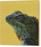 Lizard Wood Print by Karen Walzer