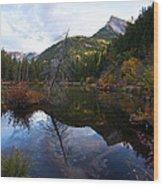 Lizard Lake Wood Print
