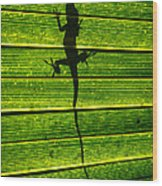 Lizard On The Other Side Wood Print