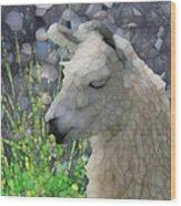 Llama Wood Print by Jack Zulli