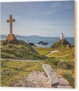Llanddwyn Island Bench Wood Print