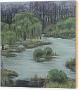 Llorones Del Lago.  Weeping Lake  Wood Print