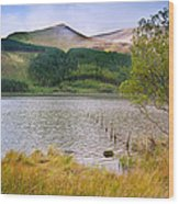 Llyn Cwellyn In Snowdonia National Park Towards M Wood Print