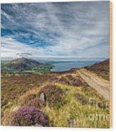 Llyn Peninsula Wood Print