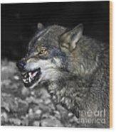 Lobo Wood Print