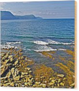 Lobster Cove In Rocky Harbour-nl Wood Print