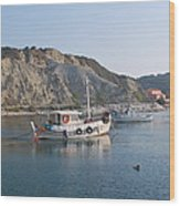 Local Fishing Boats Wood Print
