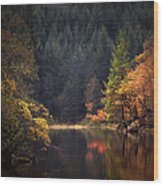 Loch Ard In The Fall Wood Print