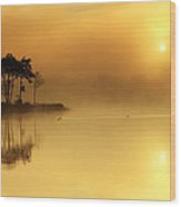 Loch Ard Morning Glow Wood Print