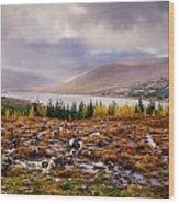 Loch Loyne Cairns Wood Print