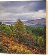 Loch Loyne Wood Print