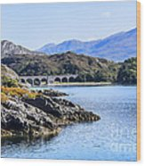 Loch Nan Uamh Viaduct 2 Wood Print