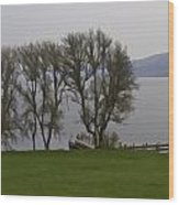 Loch Ness And Boat Jetty Next To Urquhart Castle Wood Print