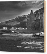 Lochranza Castle Wood Print