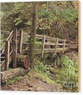 Log Bridge In The Rainforest Wood Print