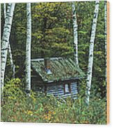 Log Cabin In The Birch Forest Vermont Wood Print