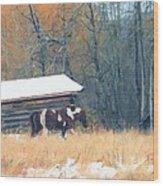 Log Cabin Pony Wood Print