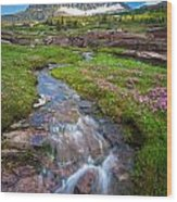 Logan Pass Creek Wood Print