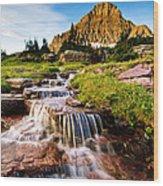 Logan Pass Wood Print