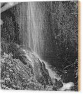 Loja Waterfall Mono Wood Print
