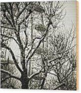London Eye Through Snowy Trees Wood Print