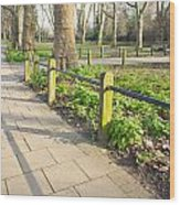 London Park Wood Print by Tom Gowanlock