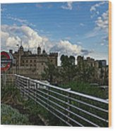 London Underground And The Tower Of London Wood Print