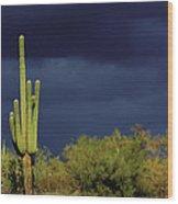 Lone Cactus Sentry Wood Print