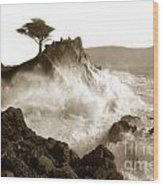 Lone Cypress Tree On  Midway Point Pebble Beach California Circa 1916 Wood Print