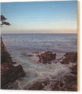 Lone Cyprus Pebble Beach Wood Print