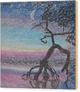 Lone Dancer By Moonlight  Wood Print