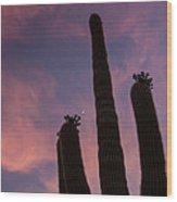 Lone Desert Giant Wood Print