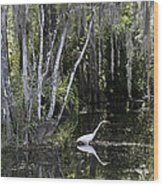 Lone Egret Wood Print