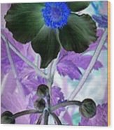 Lone Flower 1 Wood Print