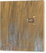 Lone Grebe Wood Print