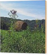 Lone Hay Round Wood Print by Willy  Nelson