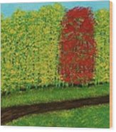 Lone Maple Among The Ashes Wood Print