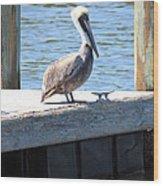 Lone Pelican On Pier Wood Print