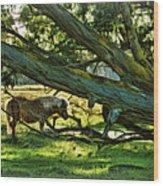 Lone Pony Wood Print