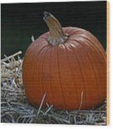 Lone Pumpkin Wood Print