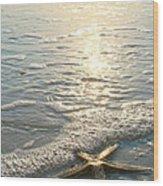 Lone Star On Lovers Key Beach Wood Print by Olivia Novak