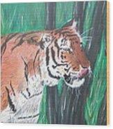 Lone Tiger Wood Print