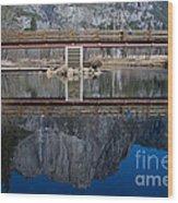 Lone Tourist And  Yosemite Falls Reflection Wood Print