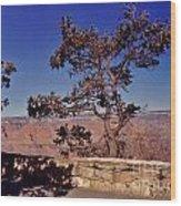 Lone Tree Along The South Rim Wood Print