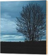 Lone Tree At Dusk Wood Print