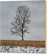 Lone Tree In Winter Wood Print