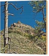 Lone Tree On The Mountain Wood Print