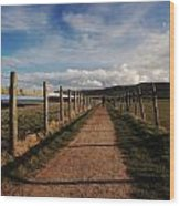 Lone Walker On The North Yorkshire Coastal Path Wood Print